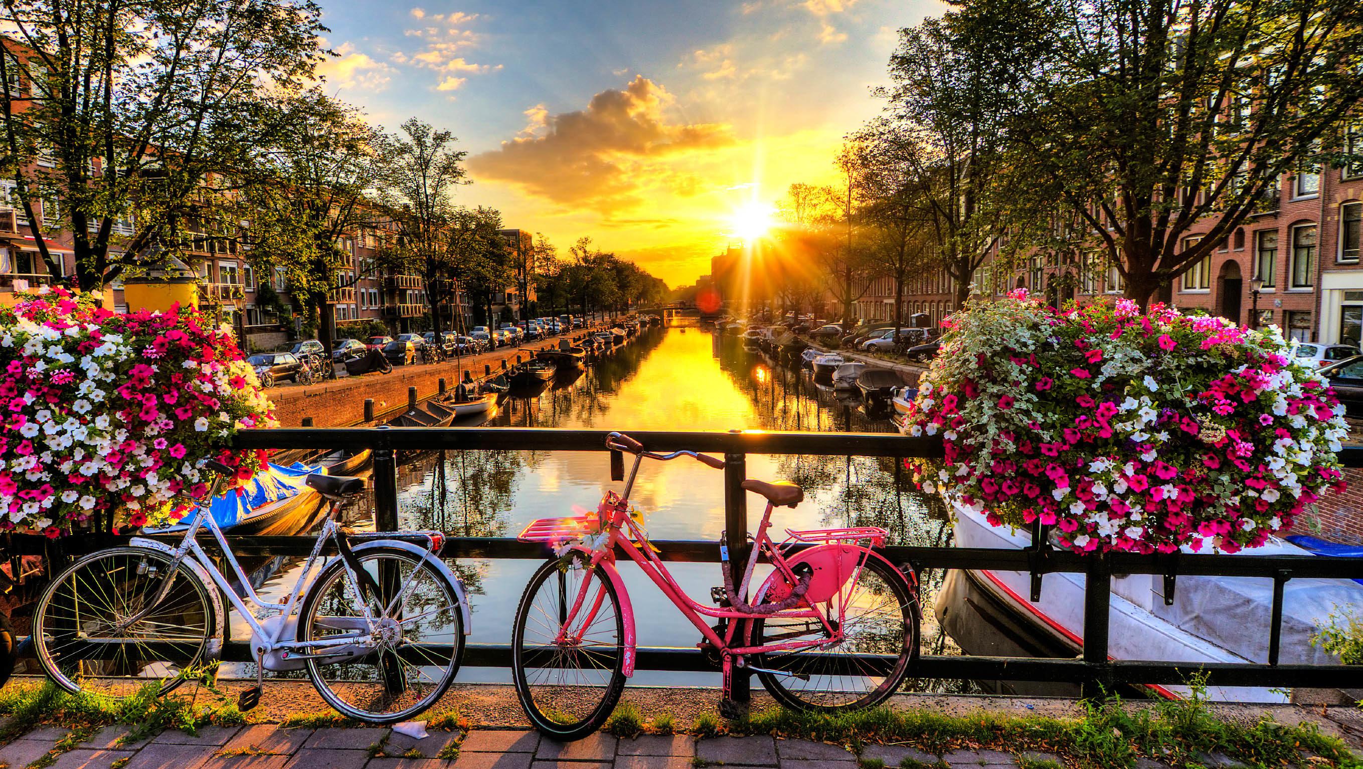 cropped-amsterdam-2.jpg